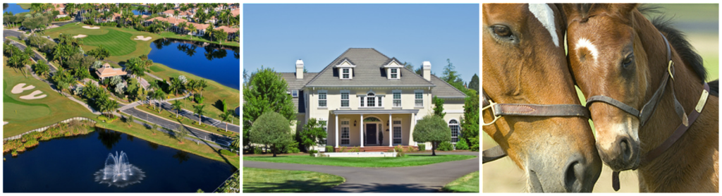 Oak Hollow Estates Homes
